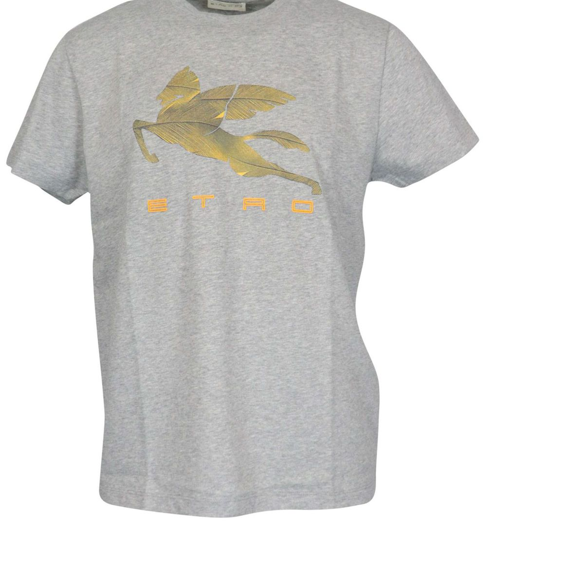 Regular-fit cotton T-shirt with contrasting logo print Grey Etro