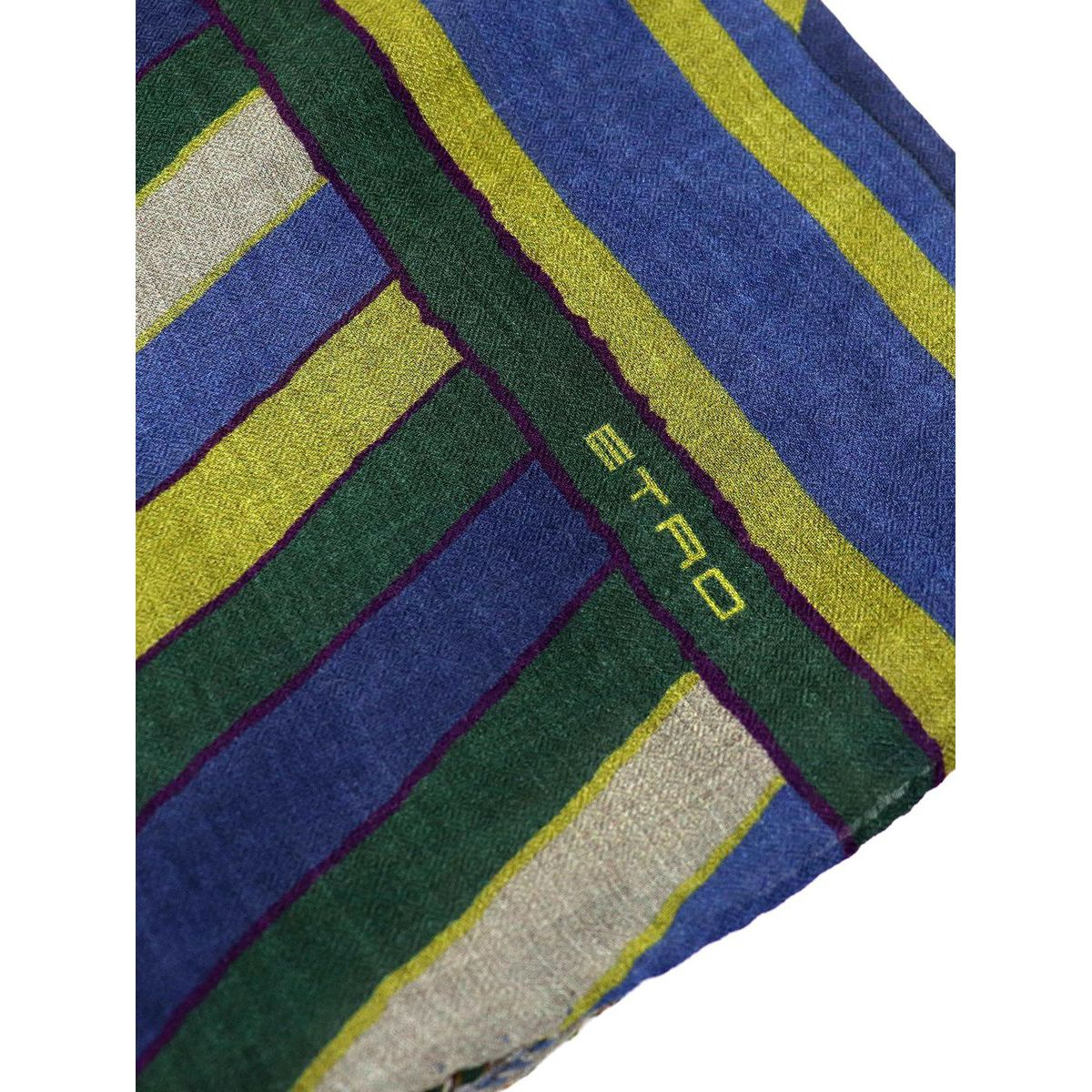 Mixed modal and wool scarf with mulricolor print Indigo Etro